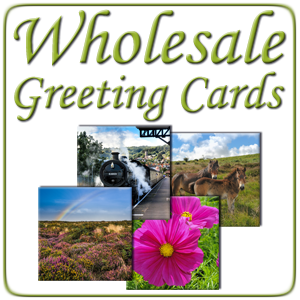 Wholesale Greeting Card Button